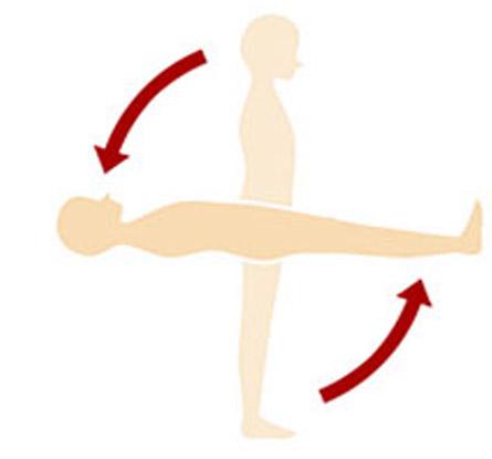 理想的な寝姿勢とは頭部・背中・お尻・かかとの4点が寝床に付いている状態を指します。