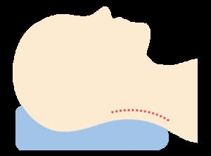 仰向けの場合は骨格がS字になるような枕が適しています。