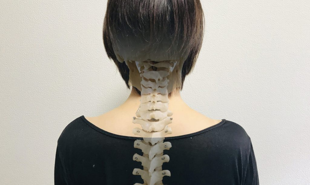 ストレートネックの方は頚椎がゆるくS字を描くような高さを意識して枕を選びましょう。